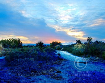 Photo: Pastel sunset, Landscape with Blues and pinks, Nature scene, HDR, Wall Decor Photo, Fine Art Photography Print [blu]