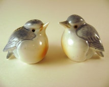 Blue Birds Salt and Pepper Shakers by Giftcraft, Fat Happy Fluffed-Up Pair of Cute Birds S&P Set Handpainted Light Blue, White, Peach front