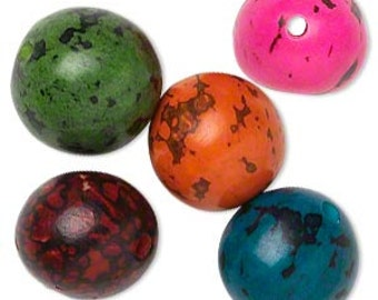 Tagua Bead, Tagua Nut Bead, assorted color, small, 5 each, 14mm to 18mm, D480