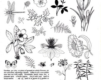 Garden Collage - A4 non adhesive Unmounted rubber stamp- 26 designs