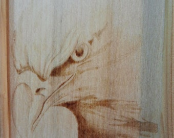 Eagle, pyrography on wood panel