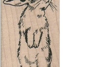 Easter rabbit bunny  rubber stamps  stamping scrapbooking supplies   764