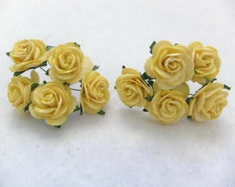 10 25mm mulberry yellow roses