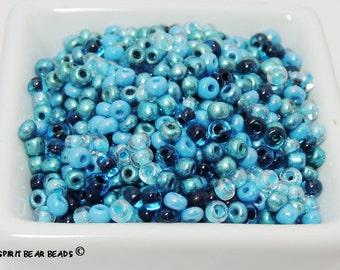 AVATAR Blue Seed Bead Mega Mix  6/0 Czech Glass  Loose Beads