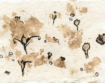 Watermedia on handmade paper  Seeds and Pods // ORIGINAL / ink drawing  ooak   botanical  tea stains