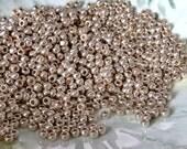 Galvanized Aluminum PF Toho 8/0  : 10 Gram Size 8 Silver Seed Bead