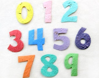 25 Plantable Seed Paper Numbers - Birthday Party Favors - Cupcake Toppers Age - Flower or Herb Seed - Age 0 1 2 3 4 5 6 7 8 9