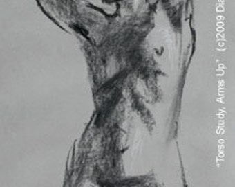 Nude Female Gesture Drawing --TORSO STUDY -- 18x12 inch charcoal sketch, unframed, by Diana Moses Botkin