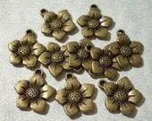 10 Bronze Flower Charms 16mm x 16mm