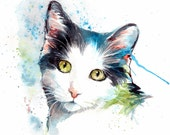 White and grey cat painting original watercolour
