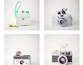 SALE - set of 4 mini camera photos, vintage cameras, toy animals, hedgehog, panda, deer, chicks, nursery decor, kids wall art, 4x4 photo set