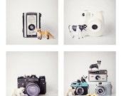 SALE -quirky camera photo set, vintage cameras, toy animals, fox, cow, polar bear, deer, panda, nursery decor, kids wall art, mini print set