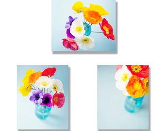 Flower photo canvas set 3 poppy photo gallery wraps, flower photography, flower photo set, bright, orange, blue, red, yellow, purple, white