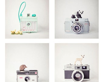 Set of 4 quirky toy animal and camera photos, vintage cameras, hedgehog, panda, deer, chicks, nursery decor, kids wall art, 4x4, 5x5  or 8x8