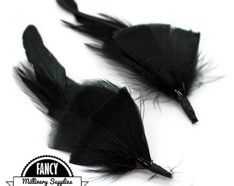 2 - Black - Feather Picks - Great for Earrings - Boutonnieres - Millinery