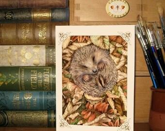 Sleeping hedgehog card by Valerie Greeley