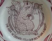 Altered Vintage Plate with drawing of Squirrel standing on a Caterpillar thinking about bikes!