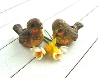 Vintage Shabby Robins Spring Birds Planters