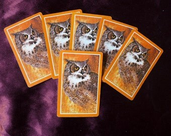 Vintage Owl Playing Cards