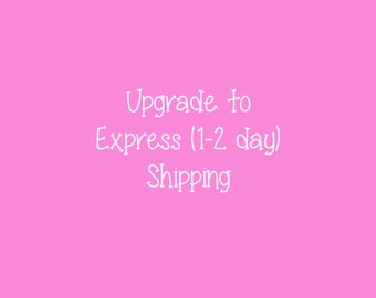 Express Mail Shipping Upgrade US ONLY