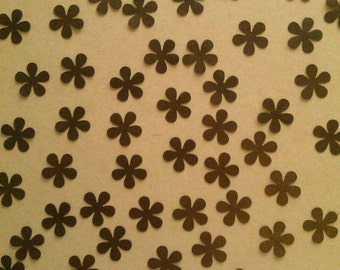 Brown Shimmer Daisy Flowers