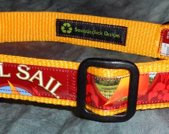 Adjustable Dog Collar from recycled older Full Sail IPA Beer Labels