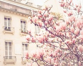 Paris Photography, Baby Pink, Paris in the Springtime, Pink Magnolia Trees, Nursery Decor, Paris Home Decor - Blush Pink