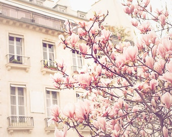 Paris Photography, Baby Pink, Paris in the Springtime, Pink Magnolia Trees, Nursery Decor, Paris Home Decor - Blush Pink