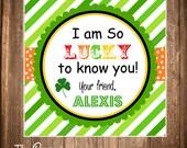 Printable St. Patrick's Day Gift Tags, Saint Patricks Printable Hang Tags, DIY, Digital File