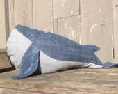 Walter the Whale is looking for a friend!