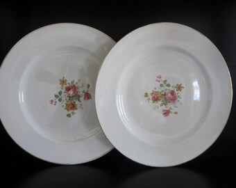 Vintage Dinner Plates With Pink Roses - Set Of Two Dinner Plates With Bouquet Of Roses  - 1940s China