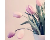 Flower Photography, Pink Tulips Photograph, Valentines Day, Still Life, Home Decor, Fne Art Print, Shabby Chic