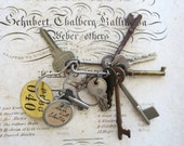 12 vintage keys, mixed keys, key collection, mixed keys, old skeleton keys, number tag, rusty rustic primitive instant collection old key #3