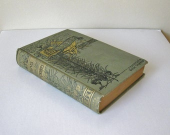 Antique Book Lights of Two Centuries, Old Decorative Book, Biography of Early Famous Composers, Writers, Artists, Sculptures,