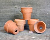 Terra Cotta Clay Pots Lot of 5 Seed Starters - Small Clay Gardening Containers