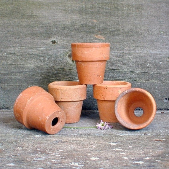 Terra cotta clay pots lot of 5 seed starters small clay for Small clay pots