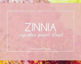 Zinnia,  Cupcakes Zinnia Pastel Blend Seeds   Rare Cutflower Beauty and Must for Every Gardener who Love Zinnias!
