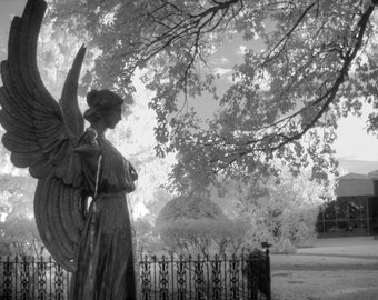 Angel photography, infrared photography,Missouri Botanical Garden,  black and white photography, fine art photography, angel home decor,