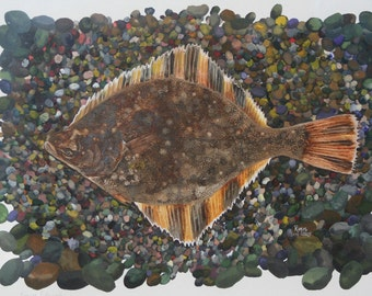 Limited Edition GICLEE MINI Print / Watercolor painting of Starry Flounder