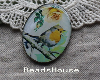 1 pcs (30x40mm) Beautiful Antique Brass Glossy Pendant/Charm - Vintage Bird (RS-02)