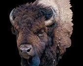 American Buffalo 3D Puff Icon of the West T Shirt Unisex Free Shipping to USA Only One Left