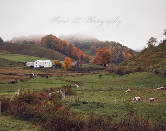 "Fine Art Print ""The American Dream"" Extra Large Wall Art Country Farm Autumn Fall Mountains Sheep"