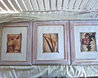Up Cycle Litho Photography / Faux Tinted Tin Type Floral Photos and Framed Wallhangings