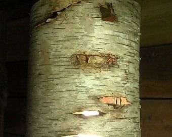 Hanging Birch Bark Lamp/Light