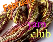 1-Month Yarn Club Subscription (Beginning Feb 2015)