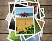POSTCARDS Set of 4. Flowers, Daisy, Frangipani, Australia, Floral, Beach, SURF, sand