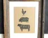 Butcher Cuts {Chicken, Pork & Beef} - Vintage Illustrated Typography Diagram Art Print