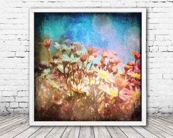 daisy print - flower photography - bohemian art - floral print - pink and blue wall art