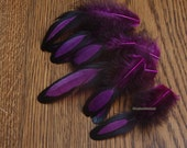Grape Colored Craft Feathers Purple Laced Hen Feather Decorative Supplies for Hair Accessories Jewelry Making, 12 Pieces