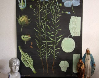 pulldown canvas Flax print poster chart wall hanging amazing